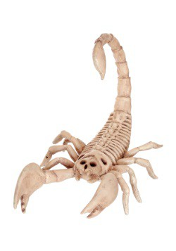 Mini Skeleton Scorpion