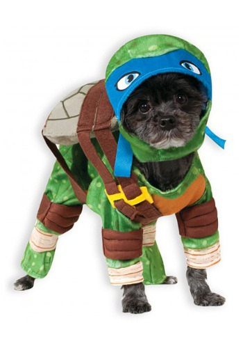 Click Here to buy TMNT Leonardo Pet Costume from HalloweenCostumes, USA Funds & Shipping