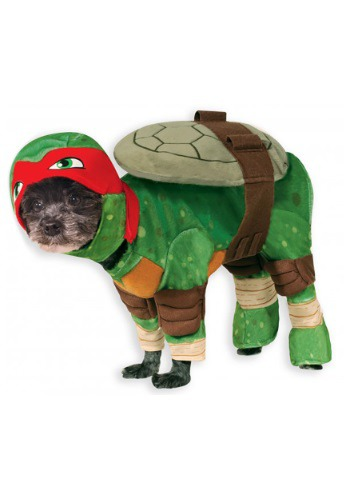 Click Here to buy TMNT Raphael Pet Costume from HalloweenCostumes, USA Funds & Shipping