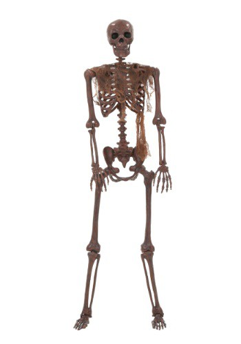 Lifesize Decayed Poseable Skeleton