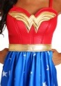 Deluxe Plus Size Long Dress Wonder Woman Costume-alt2