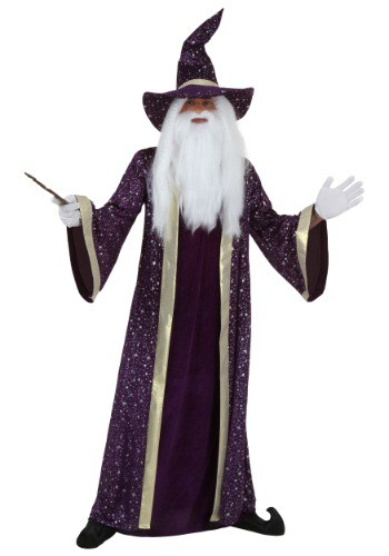 Purple Wizard Costume for Men