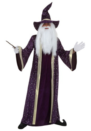 Plus Size Wizard Costume By: Fun Costumes for the 2015 Costume season.