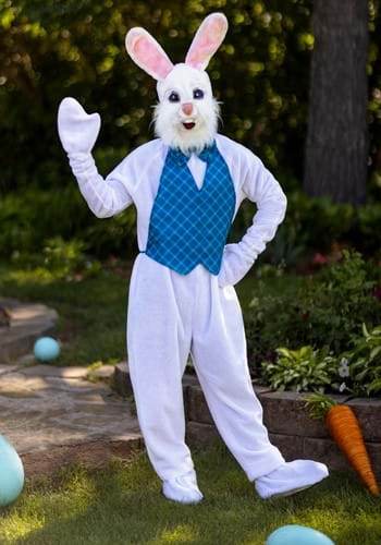 Click Here to buy Mascot Happy Easter Bunny Costume from HalloweenCostumes, USA Funds & Shipping