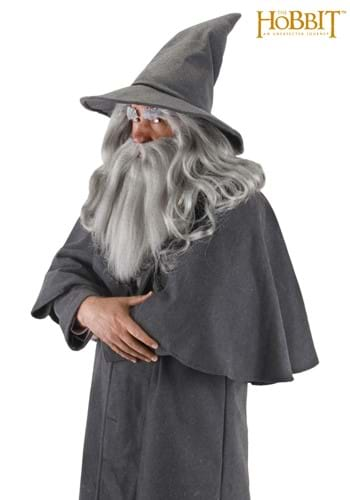 Click Here to buy Gandalf Hat from HalloweenCostumes, USA Funds & Shipping