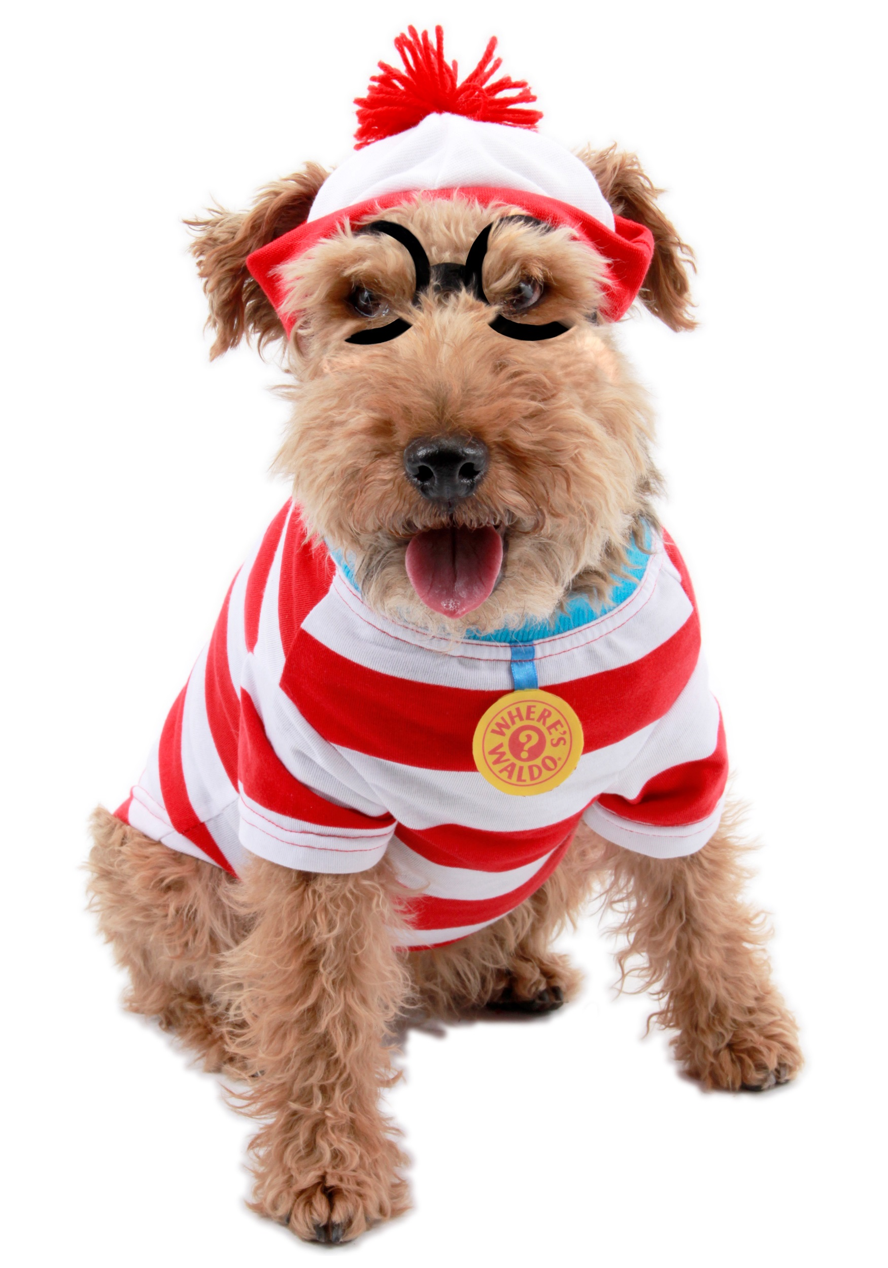waldo woof dog costume. Black Bedroom Furniture Sets. Home Design Ideas
