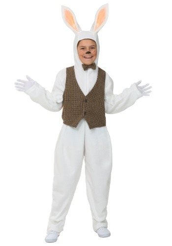 Click Here to buy Kids Classic Easter Bunny Costume from HalloweenCostumes, CDN Funds