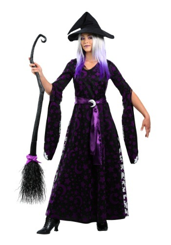 Women's Plus Size Purple Moon Witch Costume