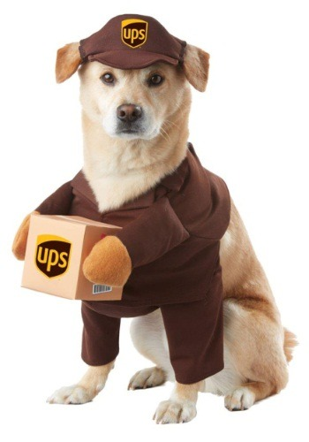 Click Here to buy UPS Dog Costume from HalloweenCostumes, USA Funds & Shipping