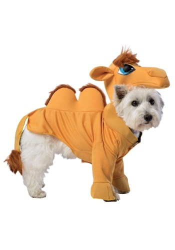 Image Camel Dog Costume