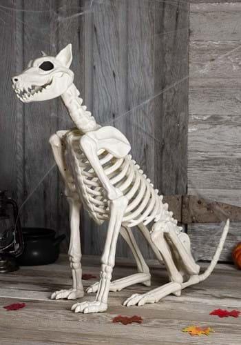 Spike the Skeleton Dog