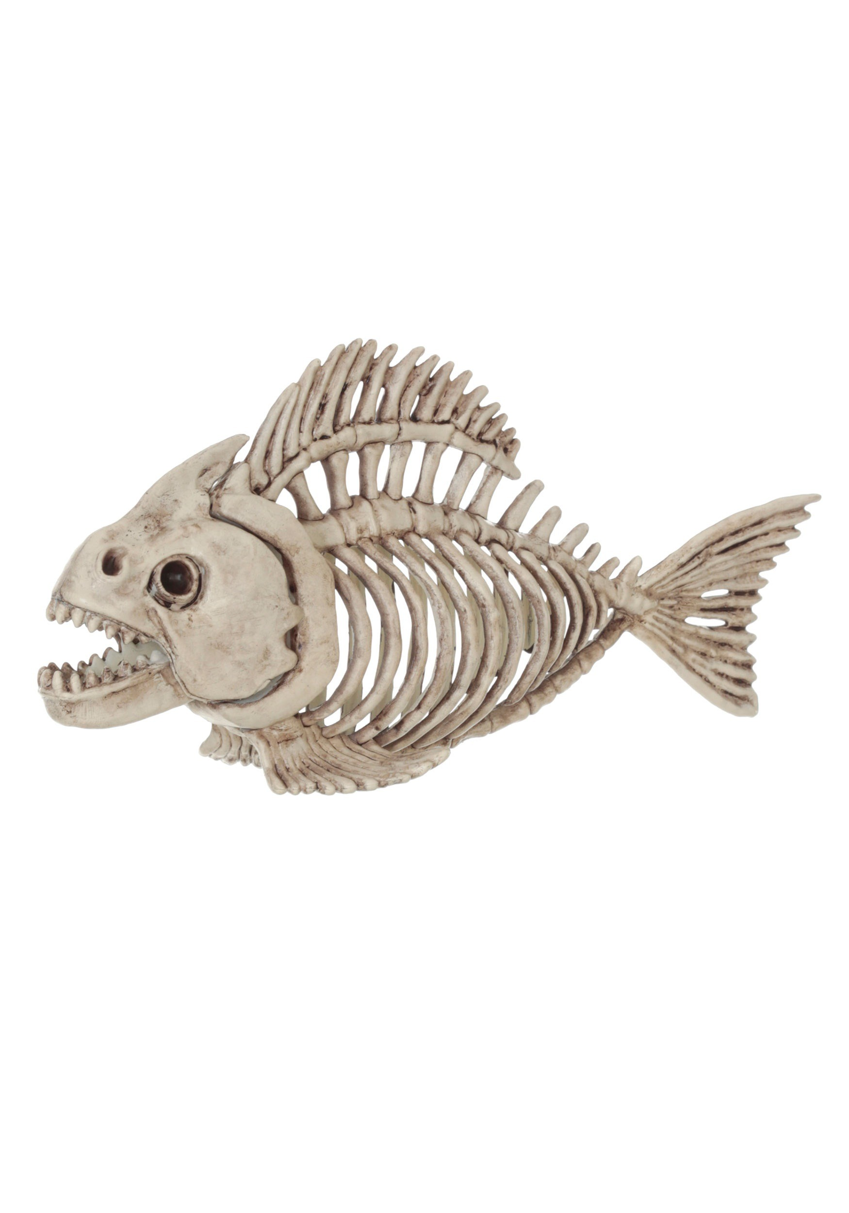 Skeleton fish for Create a fish