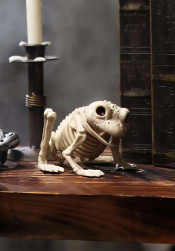 Skeleton Frog Update
