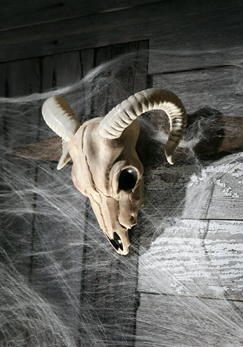 Click Here to buy Ram Skull from HalloweenCostumes, USA Funds & Shipping