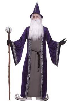 Adult Purple Wizard Costume