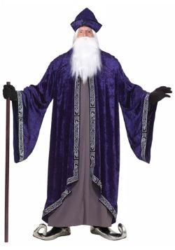 Plus Size Grand Wizard Costume
