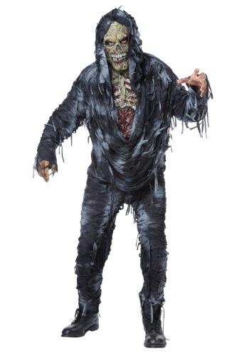 Image of Adult Rotten to the Core Costume