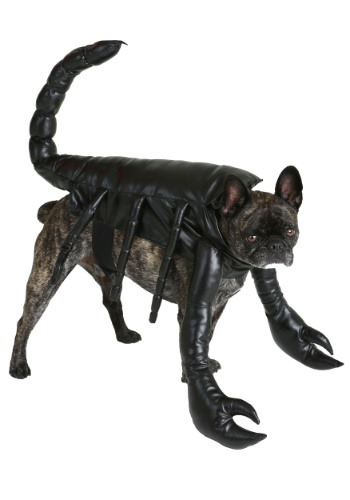 Image  Scorpion Dog Costume