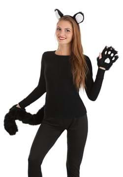 Deluxe Black Cat Kit_Update
