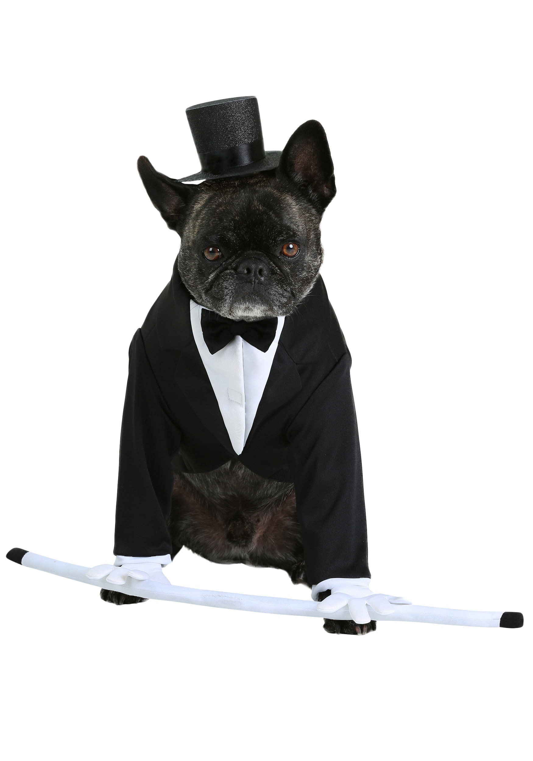 Pet costumes cat dog halloween costumes halloweencostumes formal tuxedo dog costume solutioingenieria Images