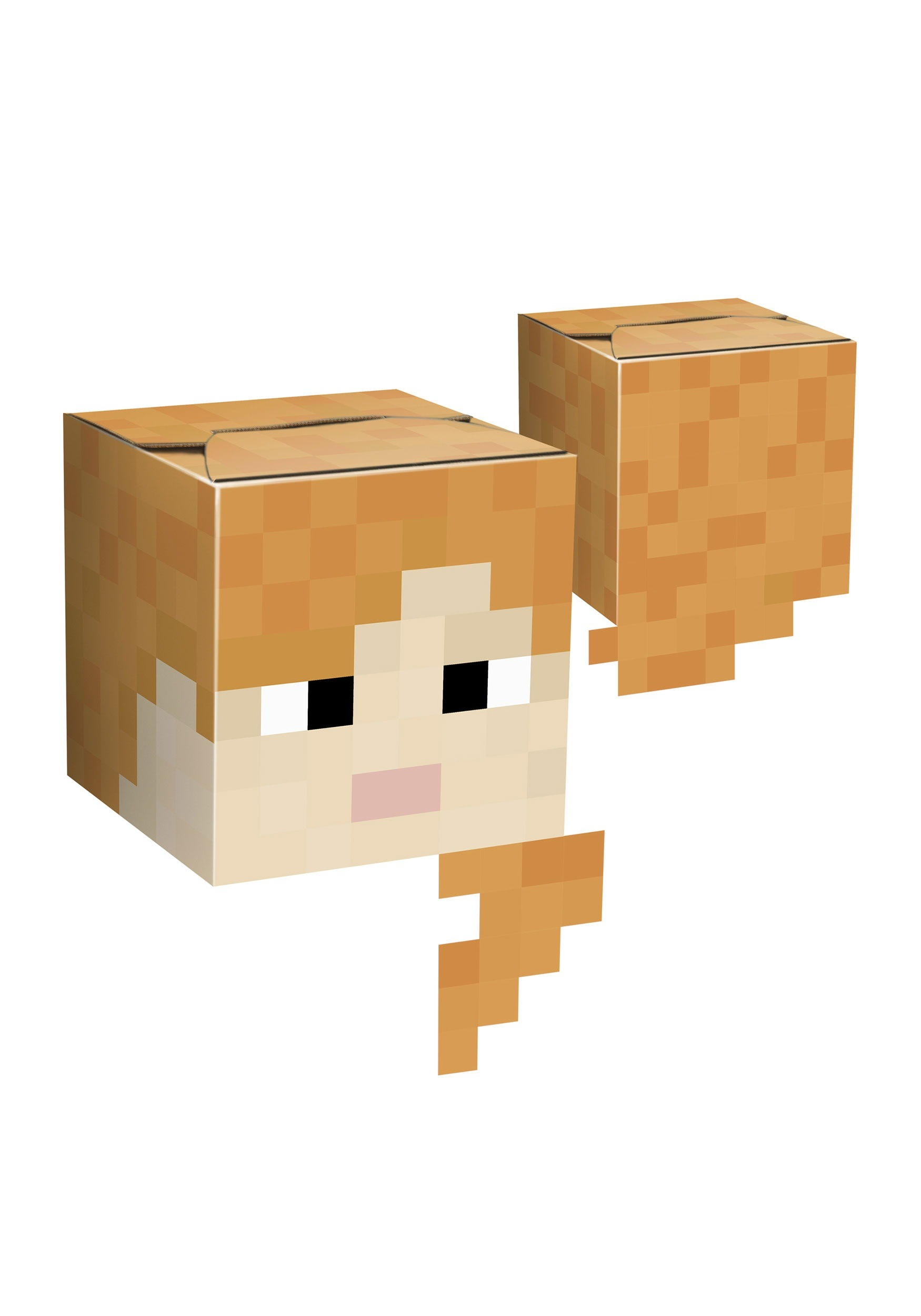 Minecraft Alex Cardboard Head  sc 1 st  Halloween Costumes & Alex Cardboard Head from Minecraft