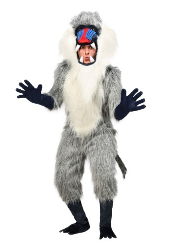 Click Here to buy Baboon Costume for Adults from HalloweenCostumes, USA Funds & Shipping