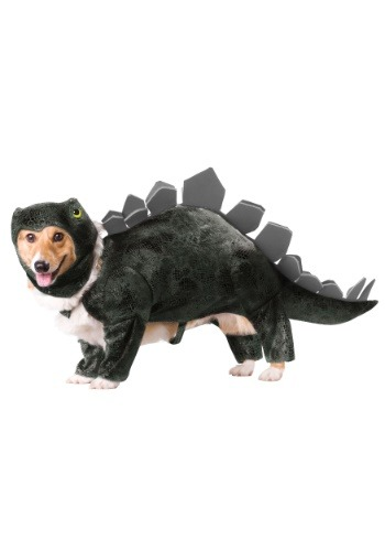 Click Here to buy Stegosaurus Dog Costume from HalloweenCostumes, USA Funds & Shipping