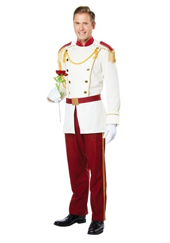 Royal Storybook Mens Prince Costume