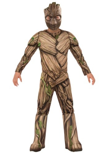 Click Here to buy Deluxe Groot Boys Costume from HalloweenCostumes, USA Funds & Shipping