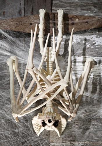 36'' Nocturnal Bat Skeleton Update 2
