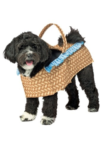 Click Here to buy Doggie in a Basket Costume for Dogs from HalloweenCostumes, USA Funds & Shipping