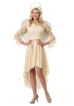 Women's Lace Angel Costume1