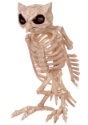 Skeleton Owl