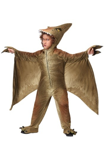 Child's Pterodactyl Costume
