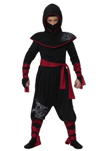 Click Here to buy Deadly Ninja Boys Costume from HalloweenCostumes, CDN Funds