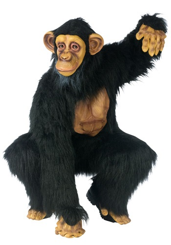 Adult Chimpanzee Costume By: Fun World for the 2015 Costume season.