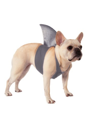 Pet Shark Fin Costume update 1