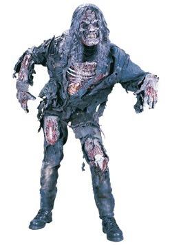 Teen Zombie Costume