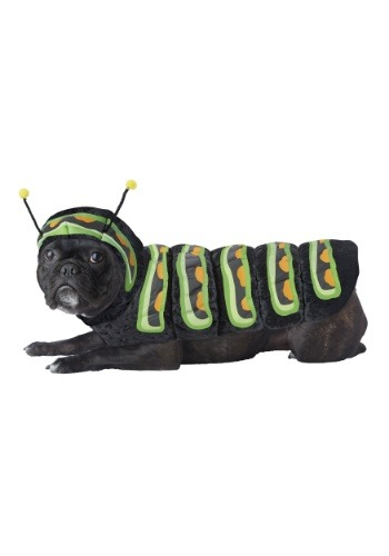 Click Here to buy Caterpillar Costume for Dogs from HalloweenCostumes, CDN Funds