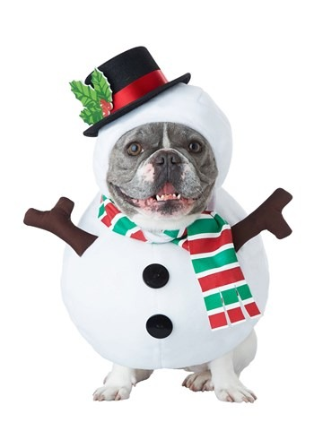 Snowman Costume for a Dog