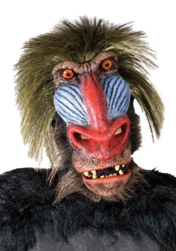 Click Here to buy Baboon Monkey Mask for Adults from HalloweenCostumes, CDN Funds