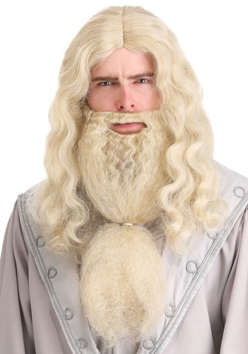 Headmaster Wizard Adult Wig and Beard