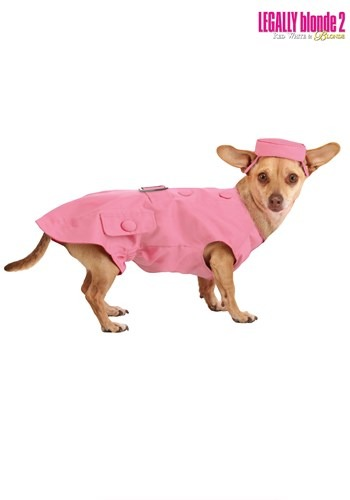 Legally Blonde 2 Bruiser Dog Costume front