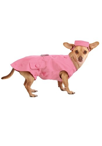 Legally Blonde 2 Bruiser the Dog Costume
