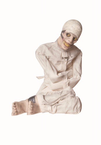 Click Here to buy Animated Insane Asylum Decoration from HalloweenCostumes, CDN Funds