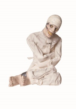 Animated Insane Asylum Decoration