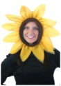 Sunflower Hood alt 1