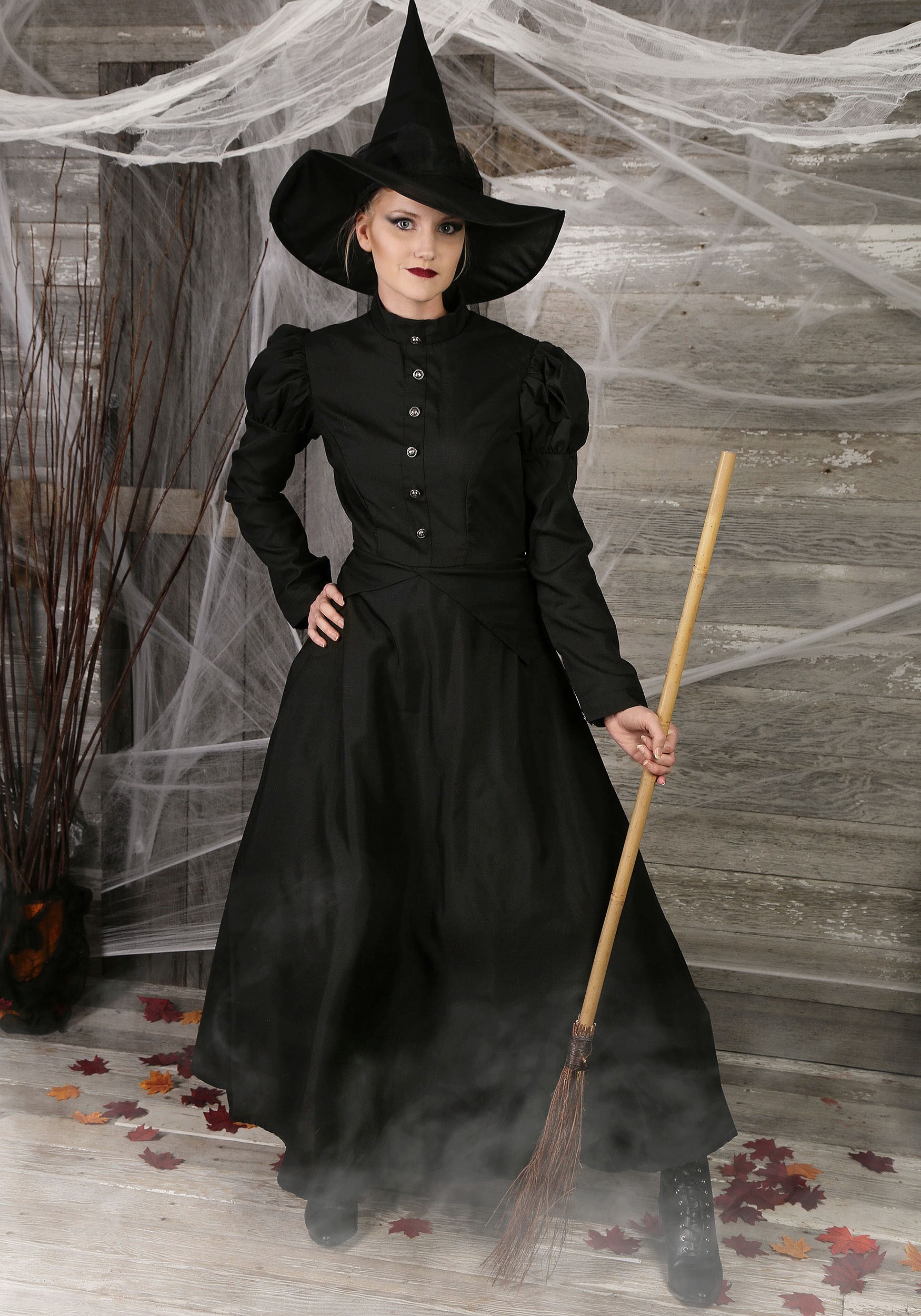 Womens Plus Size Witch Costume  sc 1 st  Halloween Costumes : wizard of oz guard costume  - Germanpascual.Com