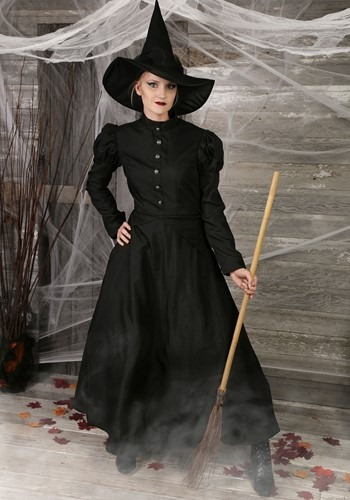 Women's Plus Size Witch Costume-update1