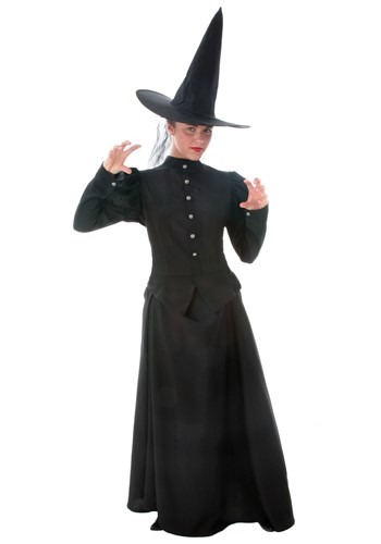 Plus Size Witch Costume for Women